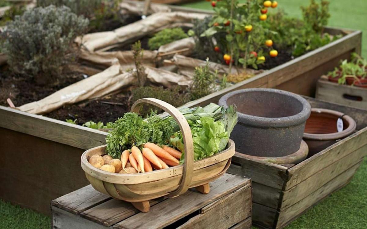 8 секретов идеального огорода