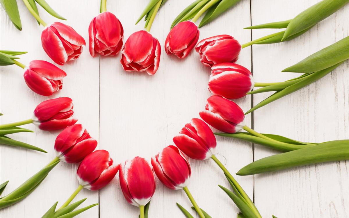 С праздником весны и любви!