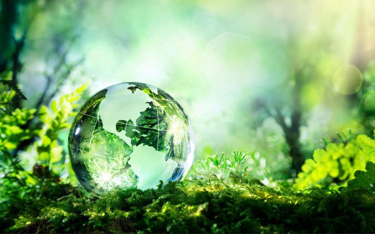 Уменьшение количества отходов с компостерами Biolan