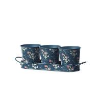 Набор мини-кашпо эмалированных Flower Girl Collection Briers