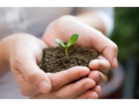 Профессиональный питательный грунт субстрат для растений и рассады Terracult blue