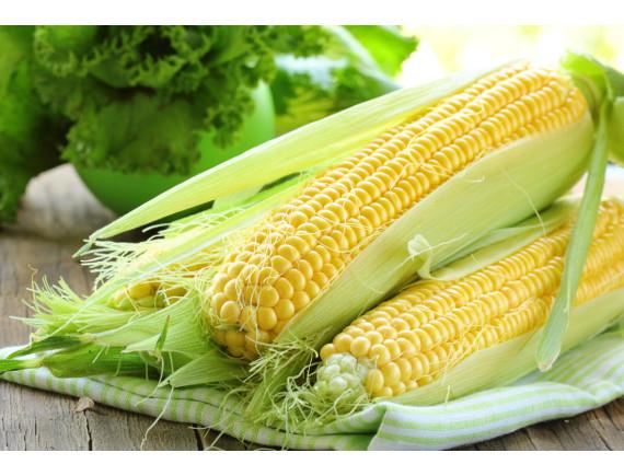 Кукуруза сахарная Старшайн F1 (20 шт)