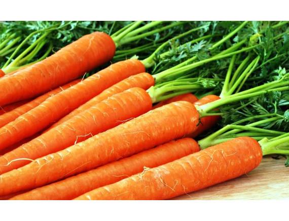Морковь Найджел F1 (0.3 гр)