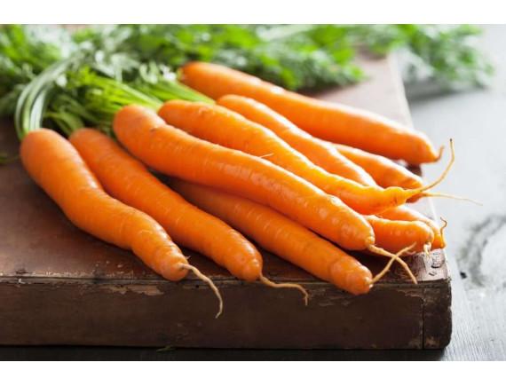 Морковь Самсон (1 гр)