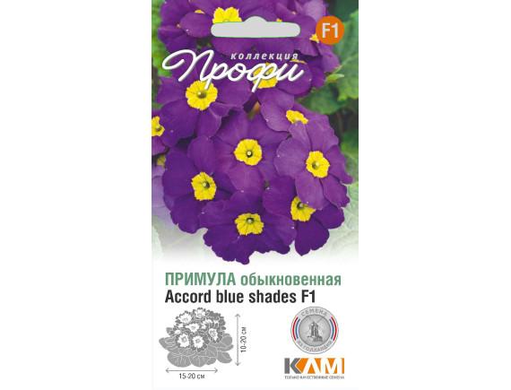 Примула (первоцвет обыкновенный) Accord blue shades F1, 10шт, Нидерланды