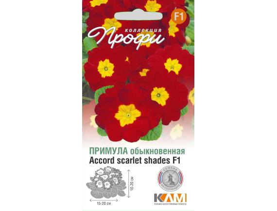 Примула (первоцвет обыкновенный) Accord scarlet shades F1, 10шт, Нидерланды