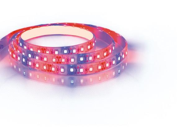 Светодиодная LED лента FERON LS670