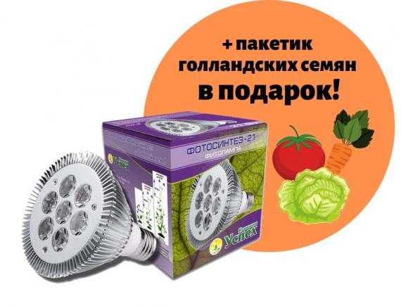 Фитолампа «ФОТОСИНТЕЗ» - 21