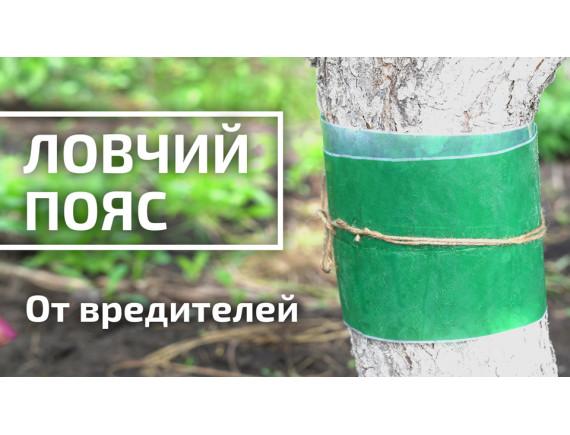 Ловчий пояс 3 метра, БашИнКом, РФ